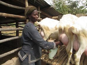 201503_landbouwprogramma